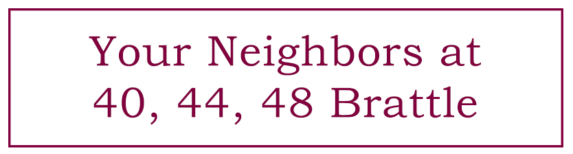 Your Neighbors Logo Purple